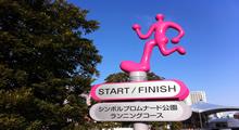 Package Tour Tokyo Marathon, Japan 2015