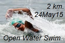 Open Water Swim 2 Kms 24 May 2015